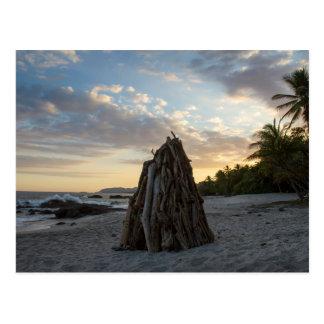 Bonfire In Montezuma Postcard