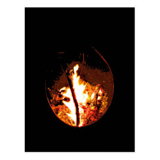 Bonfire Postcard