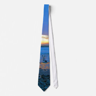 Bongo's Beach January 22, 2012 Tie