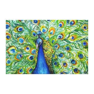 Bonito como lona del pavo real lienzo envuelto para galerías