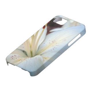 bonito del lirio blanco iPhone 5 coberturas
