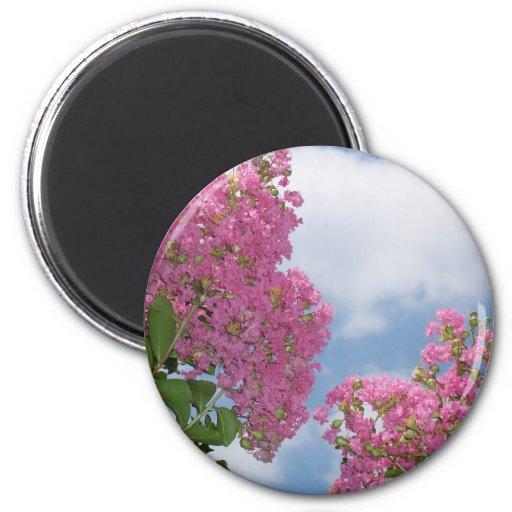 Bonito en el crespón Myrtle rosado Imán De Nevera
