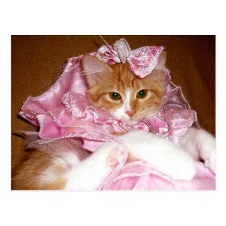 Bonito en postal rosada del gatito