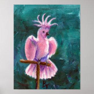 Bonito en poster del Cockatoo rosado