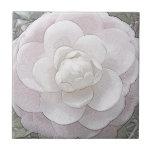 Bonito en rosa azulejo cerámica