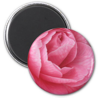 Bonito en rosa imán redondo 5 cm