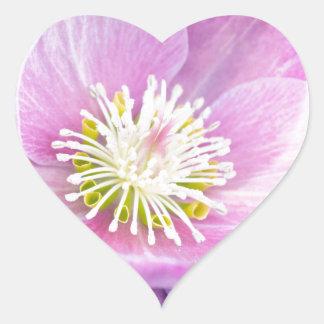 Bonito en rosa pegatina en forma de corazón