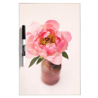 Bonito en rosa pizarras blancas