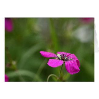 Bonito en rosa tarjeta de felicitación