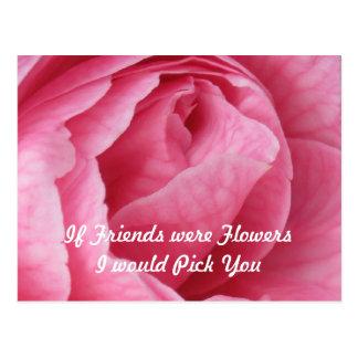 Bonito en rosa tarjetas postales