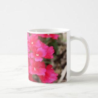 Bonito en taza rosada de la flor III