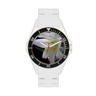 Bonito, flor blanca pura del lirio de pascua en relojes