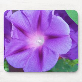 Bonito, flor delicada, púrpura en Mousepad floral Alfombrillas De Ratón