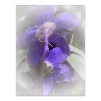 Bonito floral tarjetas postales
