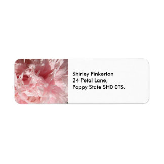 Bonito palidezca - las etiquetas de dirección rosa