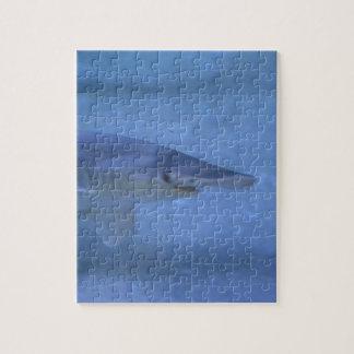 Bonnethead Shark Jigsaw Puzzle