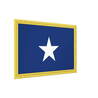 Bonnie Blue Flag 1st Texas Confederate Volunteers Canvas Print