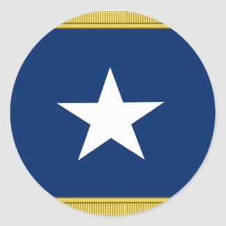Bonnie Blue Flag First Texas Cofederate Volunteers Classic Round Sticker