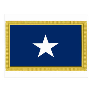 Bonnie Blue Flag First Texas Cofederate Volunteers Postcard