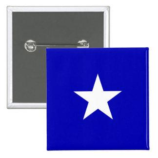 Bonnie Blue Flag Pinback Button