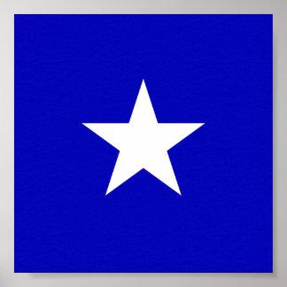 Bonnie Blue Flag Poster