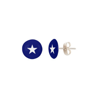 """Bonnie Blue Flag"" Stud Earrings"