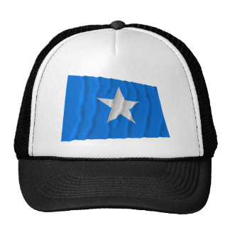 Bonnie Blue Flag / West Florida Republic Flag Trucker Hat