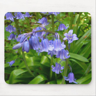 Bonnie Bluebell Mouse Pad