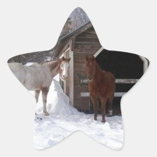 Bonnie & Clyde Star Sticker