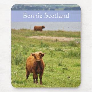 """""""Bonnie Escocia"""" con la foto joven de la vaca de l Tapetes De Ratón"""