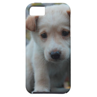 Bonnie rescue puppy iPhone cover