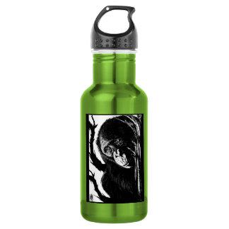 Bonobo Skyward Bottle 18oz Water Bottle