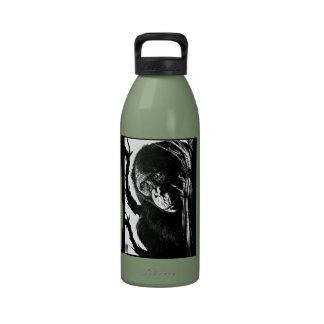 Bonobo Skyward Bottle Reusable Water Bottle