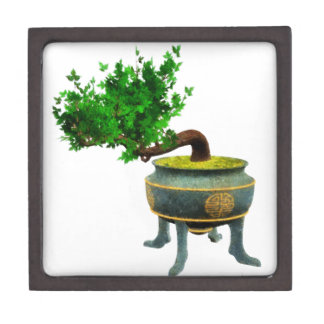 Bonsai 3 gift box