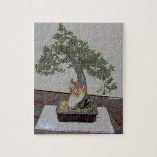 Bonsai 5 jigsaw puzzle