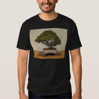 Bonsai at National Arboretum, Washington D.C. T-Shirt