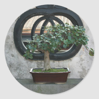 Bonsai at The Lin Family Mansion and Garden,Taipei Classic Round Sticker