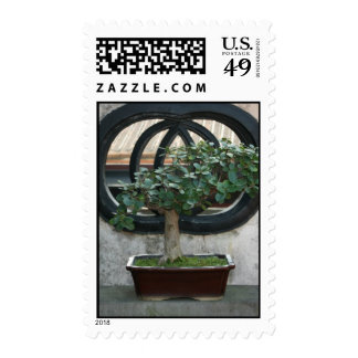 Bonsai at The Lin Family Mansion and Garden,Taipei Postage Stamps