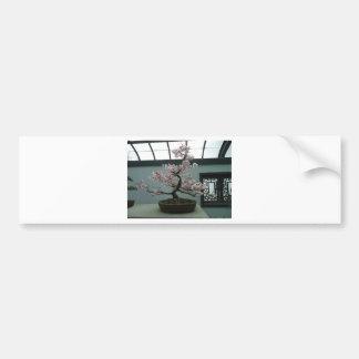 Bonsai Bumper Sticker