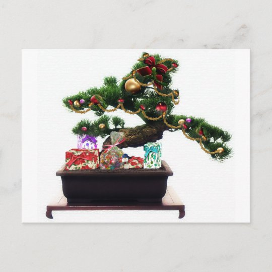 bonsai christmas tree holiday postcard