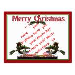 Bonsai Christmas Tree Photo Frame Post Card