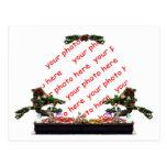 Bonsai Christmas Tree Photo Frame Postcard