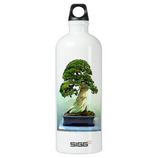 Bonsai Cypress Tree Aluminum Water Bottle