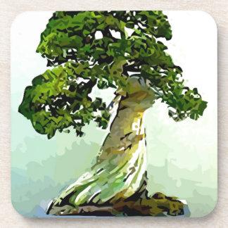 Bonsai Cypress Tree Beverage Coasters