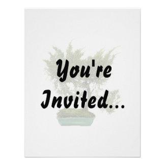 Bonsai Photo 5 Invites