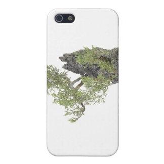 Bonsai Photo 7 Case For iPhone SE/5/5s