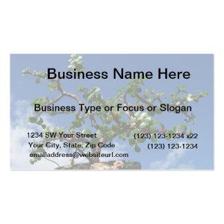 Bonsai portulacaria afra tree 1 business card