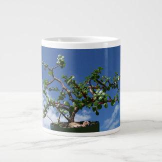 Bonsai portulacaria afra tree 1 giant coffee mug