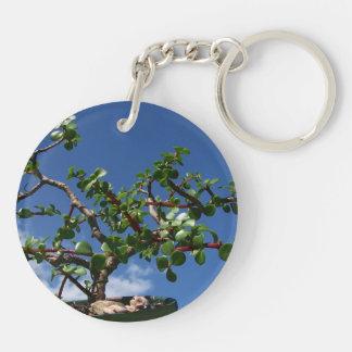 Bonsai portulacaria afra tree 1 keychain