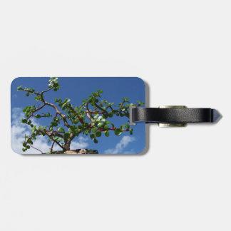 Bonsai portulacaria afra tree 1 luggage tag